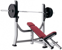 Скамья LIFE FITNESS Signature Bench-Rack SOIB